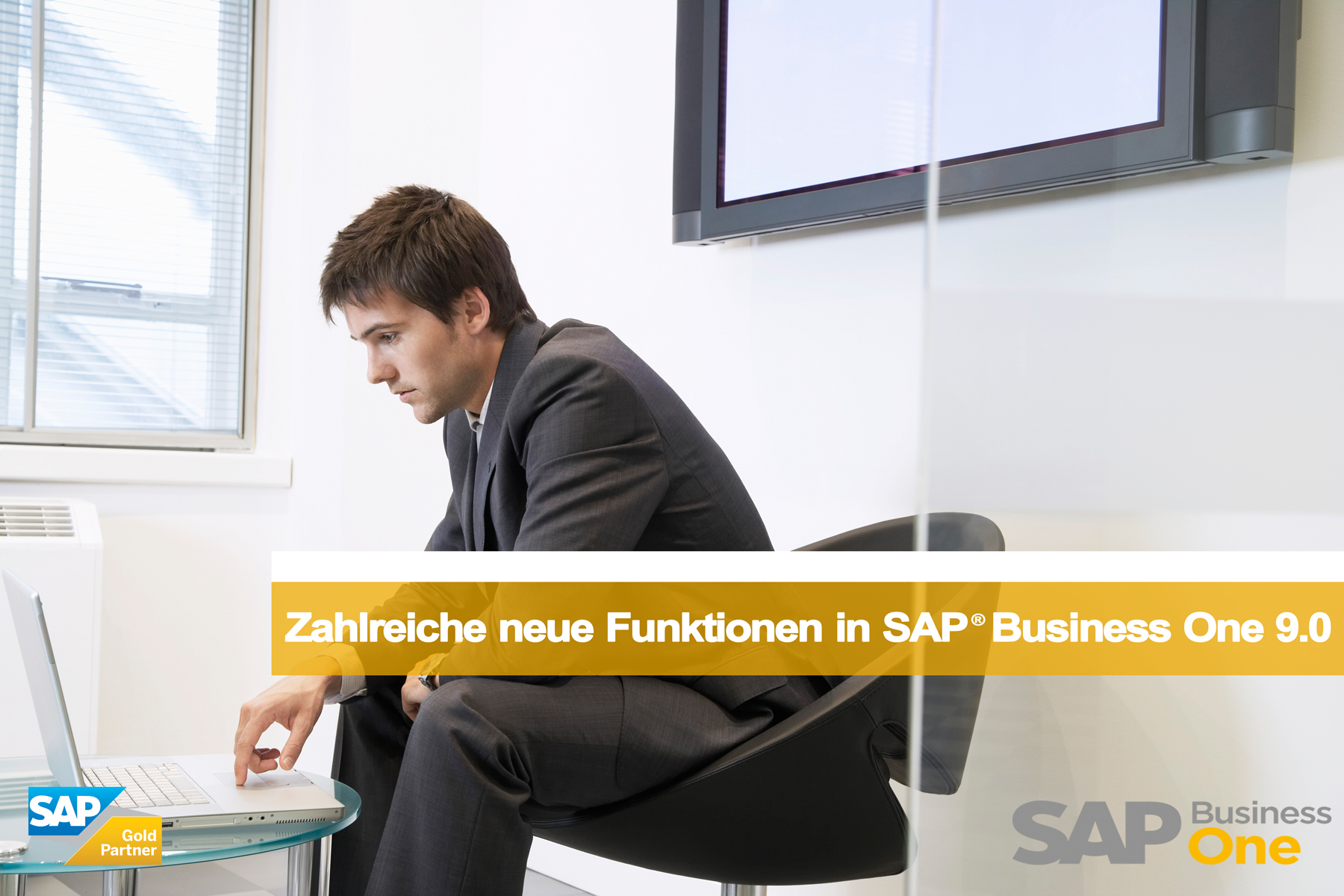 Weboptimiert2_17_01_2013_SAP_BUSINESS_ONE_9_0