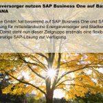 Energieversorgerlösung für SAP Business One