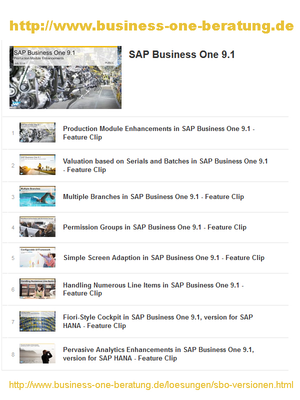 SAP Business One 9.1 ausführliche Beschreibung