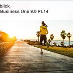SAP Business One 9.0 PL14