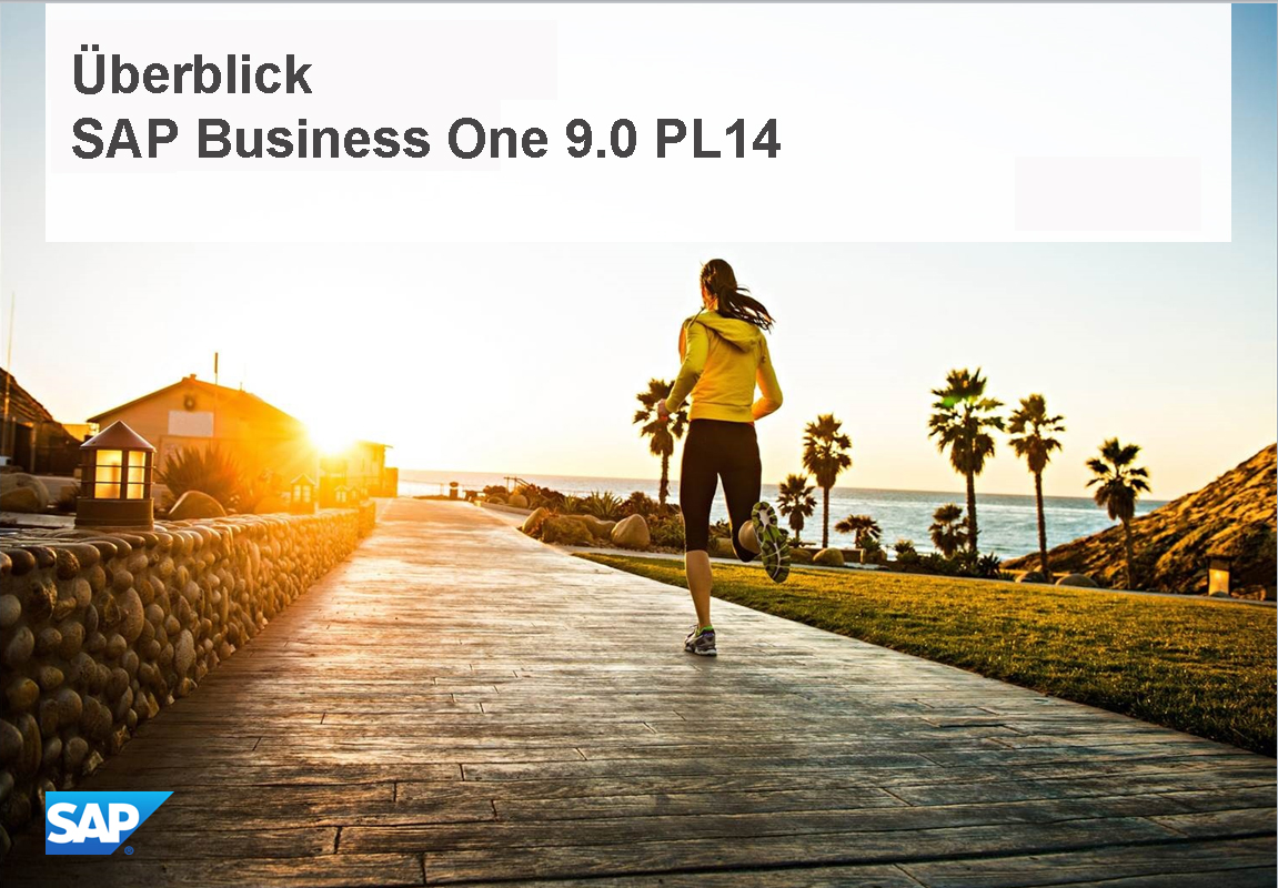 Überblick - SAP Business One 9.0 PL14