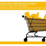 SAP Business One – FÜR SCHÖNHEIT UND WOHLBEFINDEN