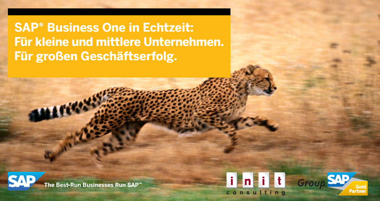 SAP Business One powered by HANA
