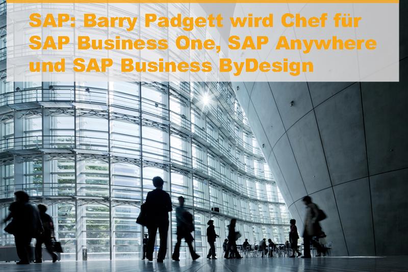 Eigenständige Organisationseinheit für SAP Business One, SAP Anywhere und SAP Business ByDesign