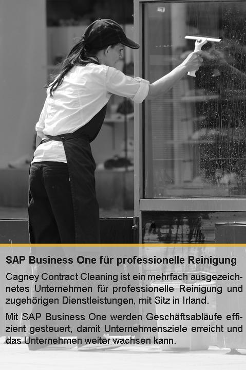 Effizienz und Produktivität mit SAP Business One steigern.