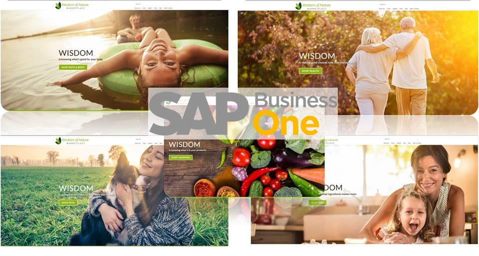 sap business one erfolgreich f r die online platform. Black Bedroom Furniture Sets. Home Design Ideas