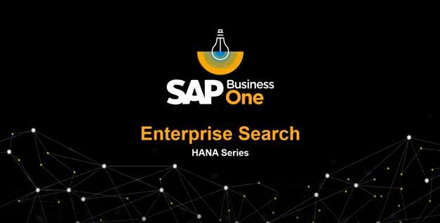 Unternehmenssuche in SAP Business One Version für SAP HANA