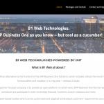 B1 WEB für SBO