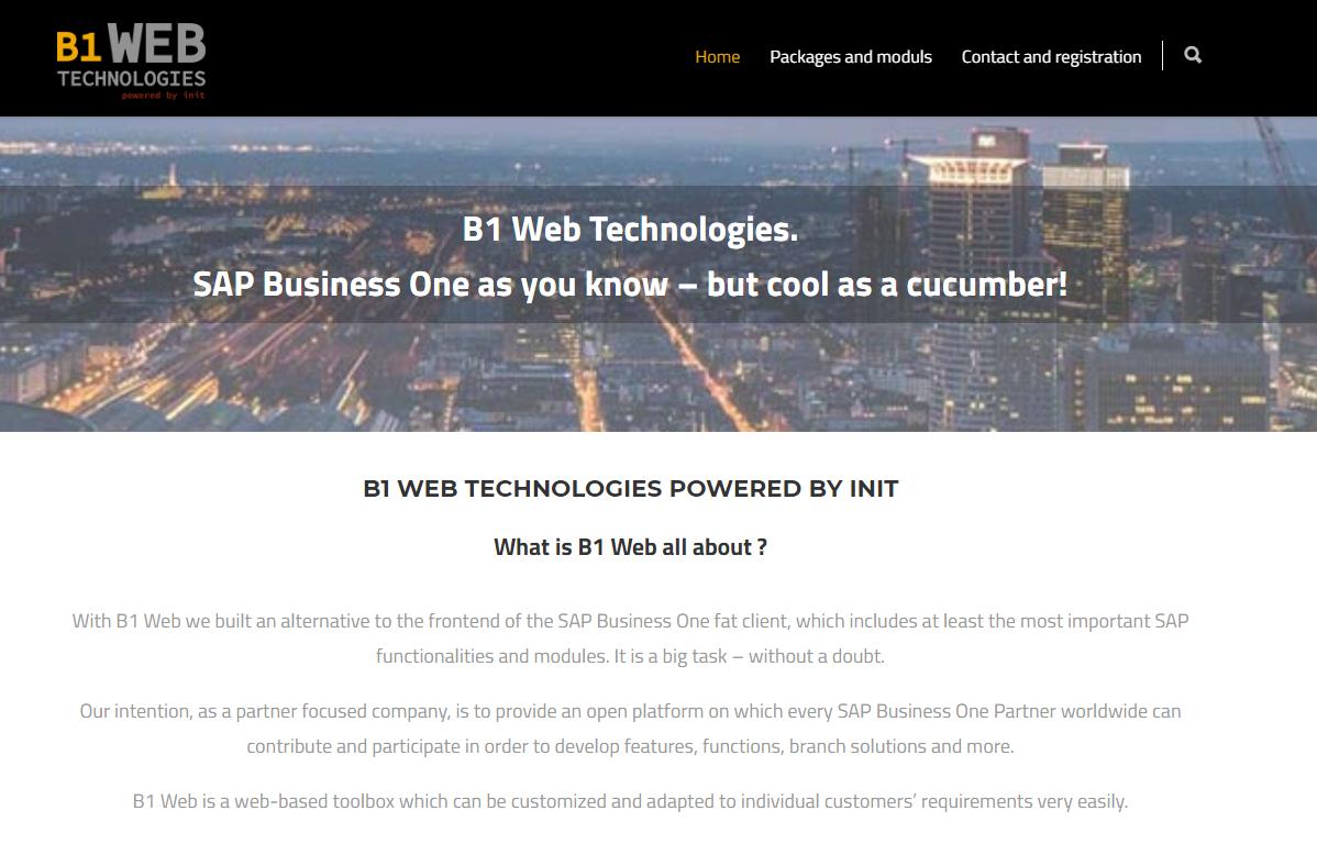 B1 Web Technologie für SAP Business One