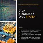 Mit SAP HANA große Daten Volumina effizient verwalten